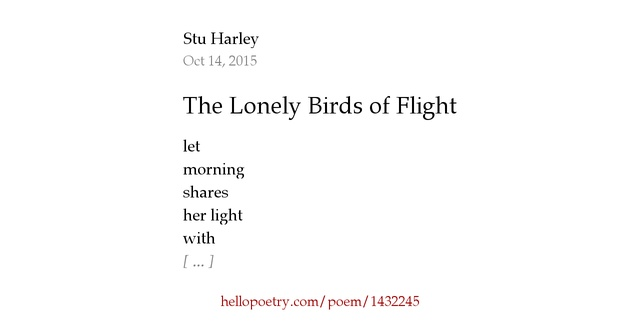 the lonely birds of flight by stu harley