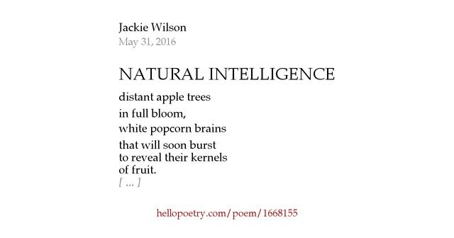 Jackie Wilson The Jackie Wilson Story