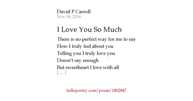 I Love You So Much by David P Carroll - Hello Poetry