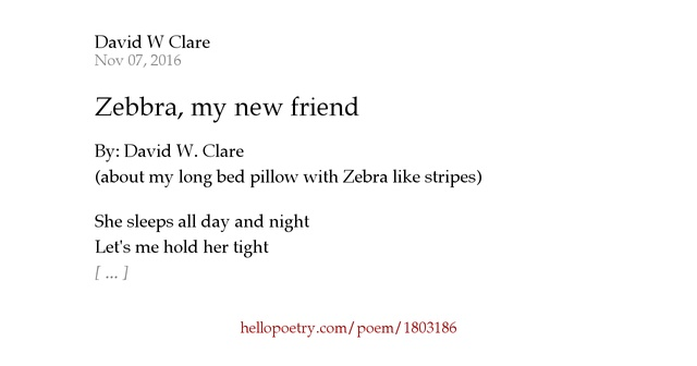 Zebbra My New Friend By David W Clare Hello Poetry