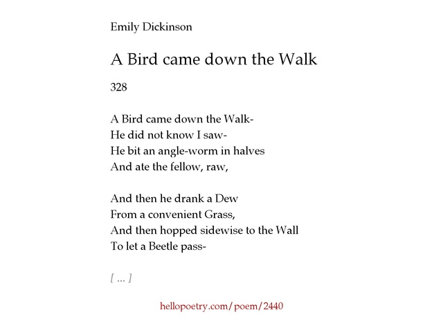 an analysis of rhyme and meter styles in a bird came down the walk by emily dickinson There is another sky by emily dickinson a bird came down the walk by emily dickinson a bird came down the walk by emily dickinson stories 1.