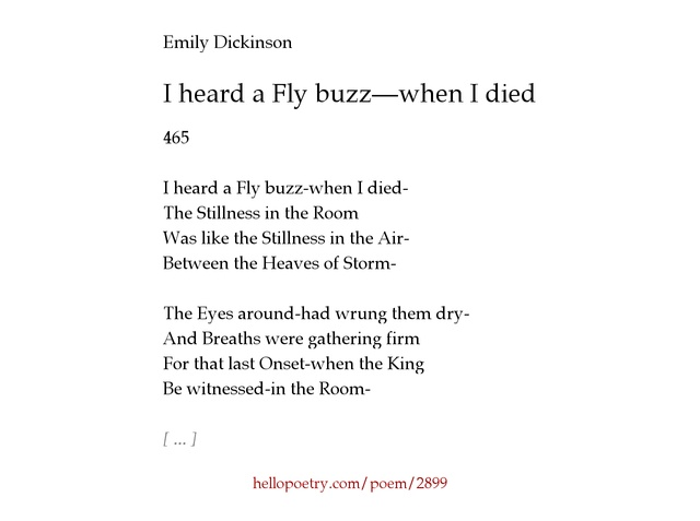 an analysis of i heard a fly buzz Emily dickinson's i heard a fly buzz is a poem describing the event of one person's death the poem is written in the first person which shows that the narrator has already died and is recounting the experience.