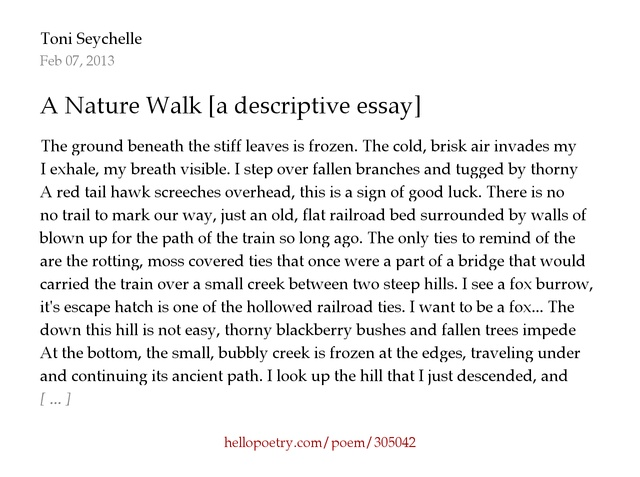 english essays descriptive