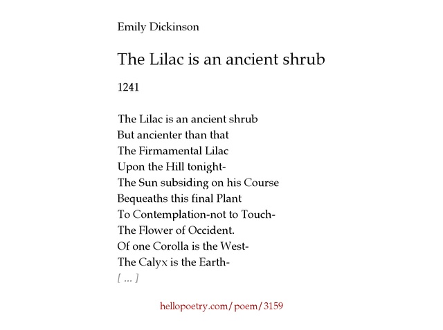 The Lilac is an ancient shrub by Emily Dickinson - Hello Poetry