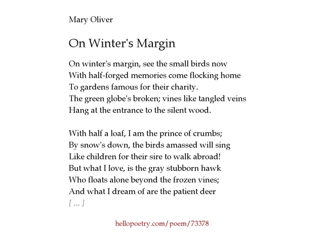 mary oliver s poems existential questions about