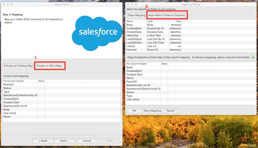 Import calls into Salesforce using Data Loader