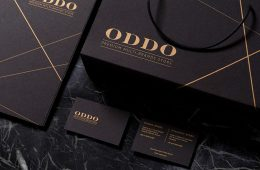ODDO Project - Branding Inspiration by Frames