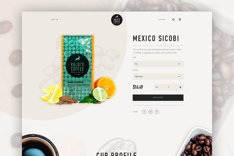 eCommerce Site Design What You Need to Know
