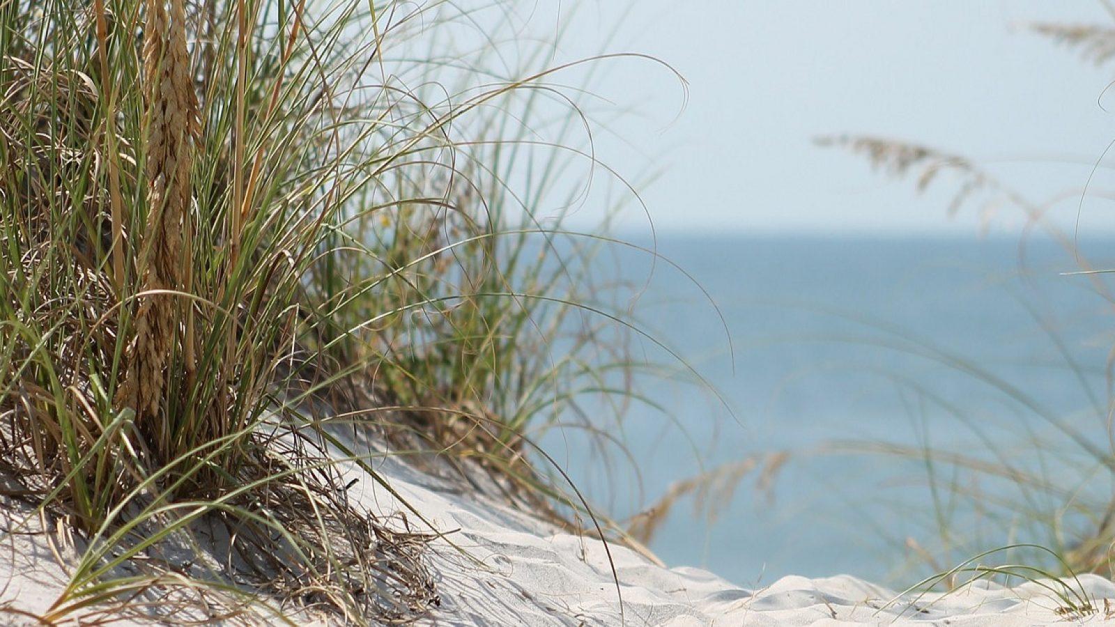 beach-184421_1920