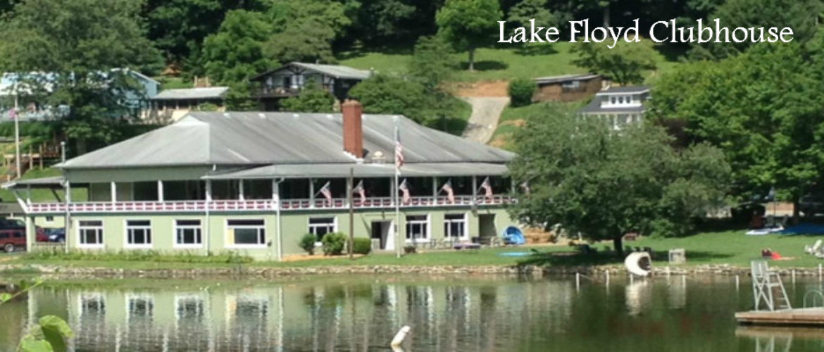 Homes for sale Lake Floyd