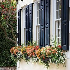 shutters and window boxes_easy ways to add road curb appeal