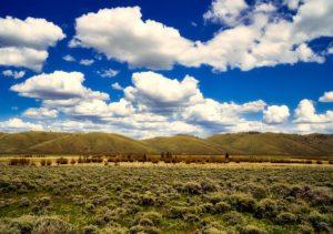 Fort Collins Colorado Real Estate