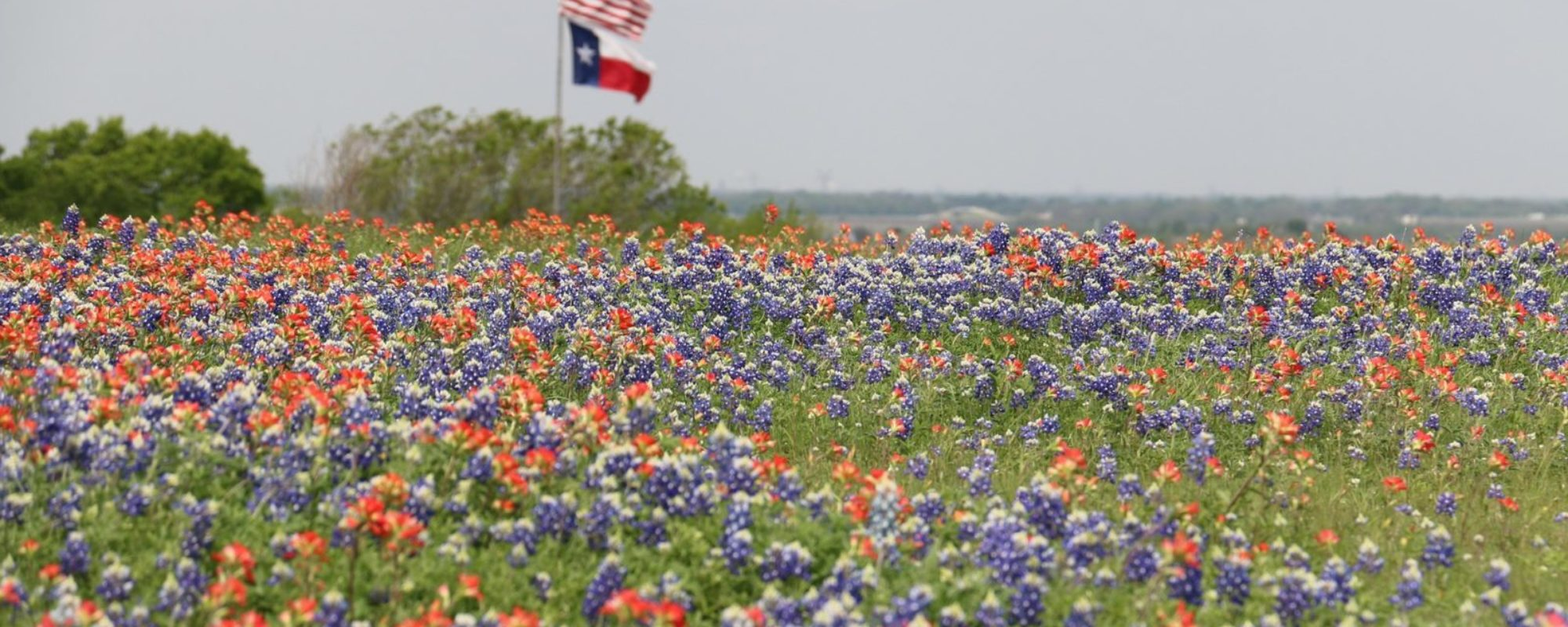 North Houston, TX