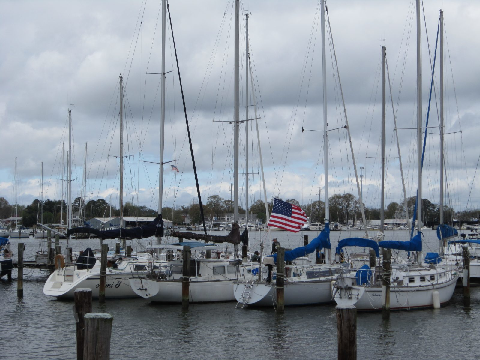 Homes for Sale in Solomons Island