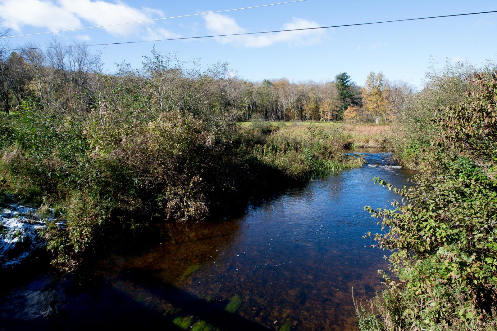 Riverside Sanctuary in the Catskills