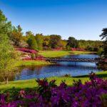 Athens Alabama Real Estate
