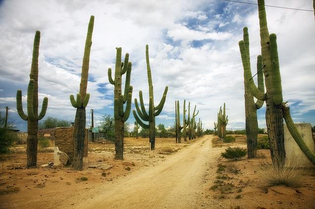 Prescott Arizona Houses