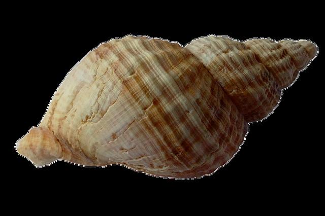 sea-1162757_640