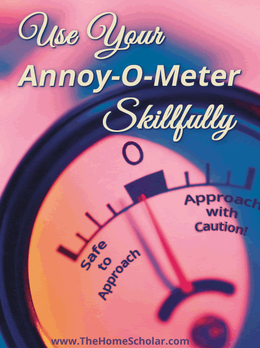 Use Your Annoy-O-Meter Skillfully #Homeschool @TheHomescholar