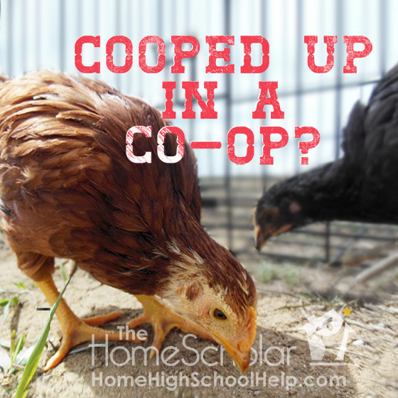 Are You Cooped Up in a #Homeschool Co-op? @TheHomeScholar