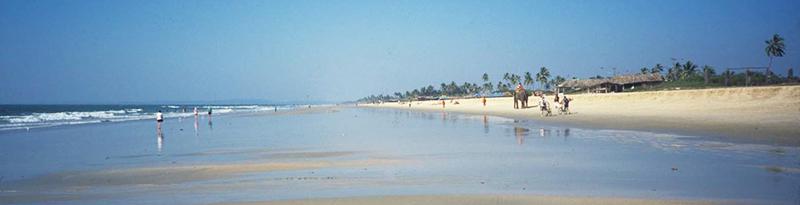 benaulim beach pic