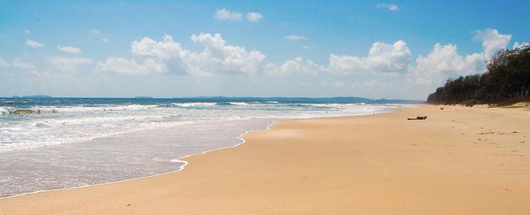 majorda beach pic