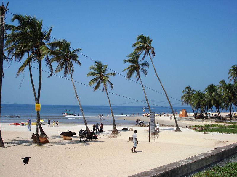miramar beach pic