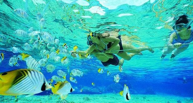 goa snorkeling pic