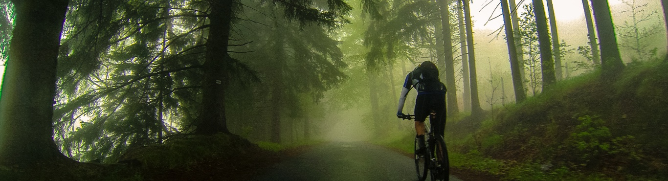 Cyclists Are More Resilient to Mental Fatigue