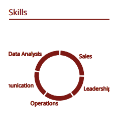 Data_Scientist_Skills_Picture