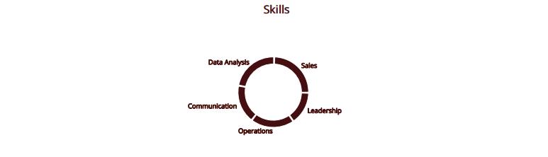 Software-Engineer-Skills-Pie-Chart