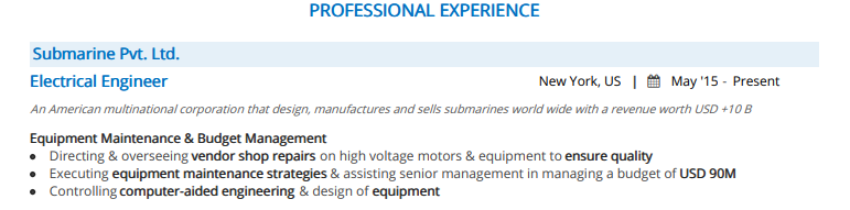 Electrical-Engineer-Professional-Experience-2