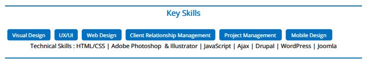 skills--web-designer