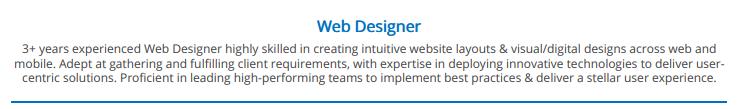 summary--Web-designer