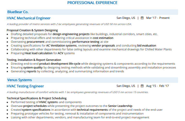 Engineering-Professional-Experience-