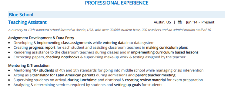 Teaching_Assistant_Professional_Experience