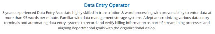 data-entry-resume-professional-summary