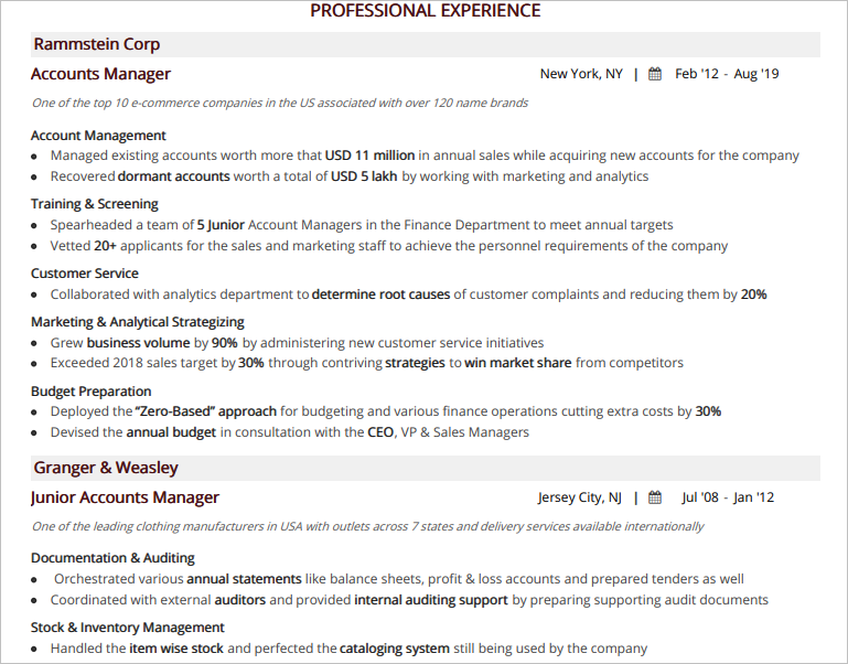 Account-Manager-Resume-Professional-Experience