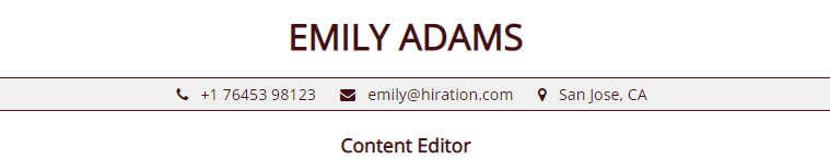 Stay-at-Home-Mom-resume-profile-title
