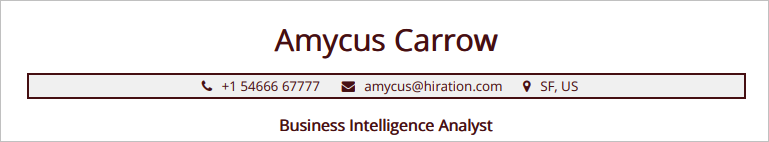 Business-Intelligence-Analyst-Profile-Title