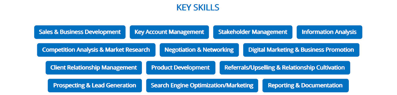 business-resume-key-skills