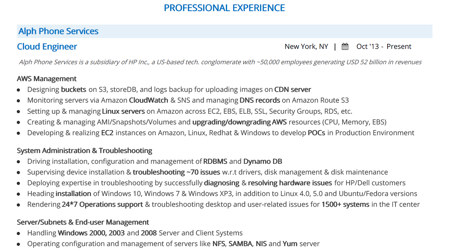 it-resume-professional-experience