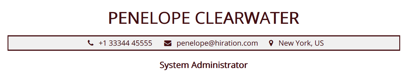 system-administrator-resume-profile-title