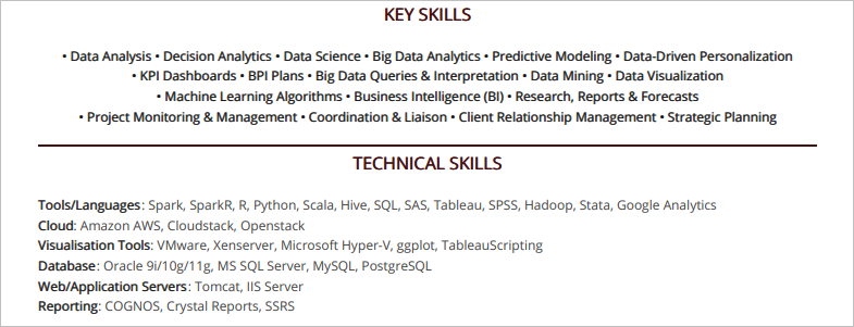 Data-Analyst-Resume-Key-Skills-1