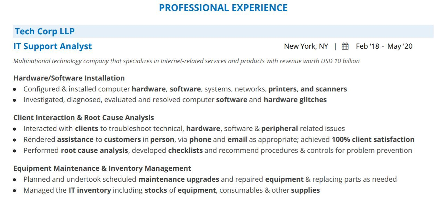 it-professional-resume-professional-experience