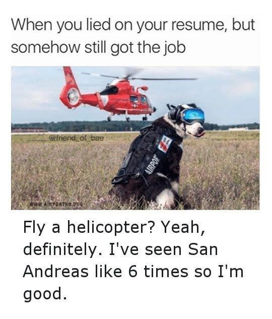 lied-on-resume