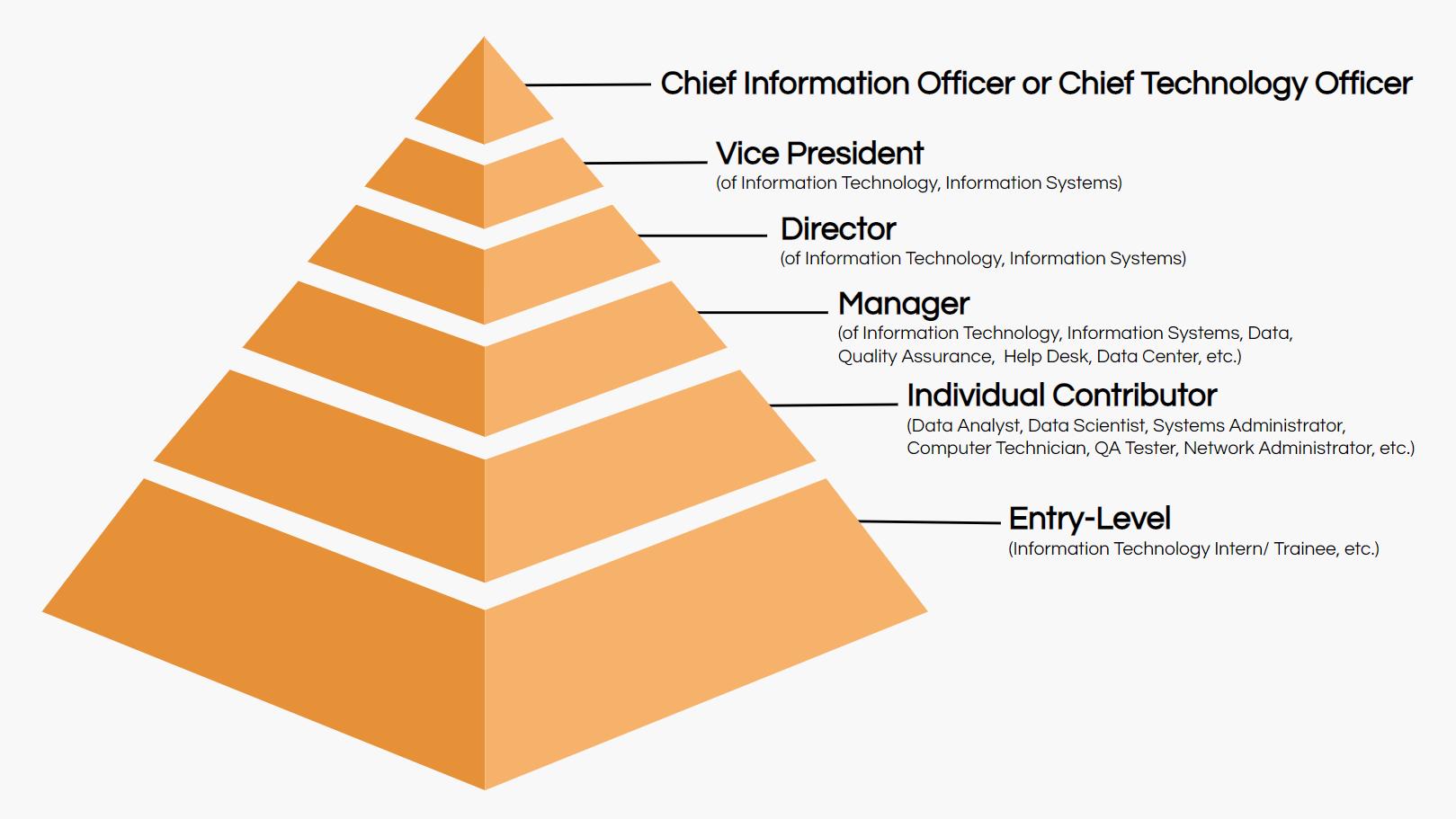 IT-job-titles-hierarchy