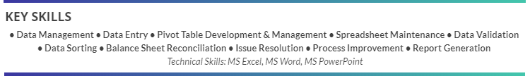 Excel-Resume-Skills