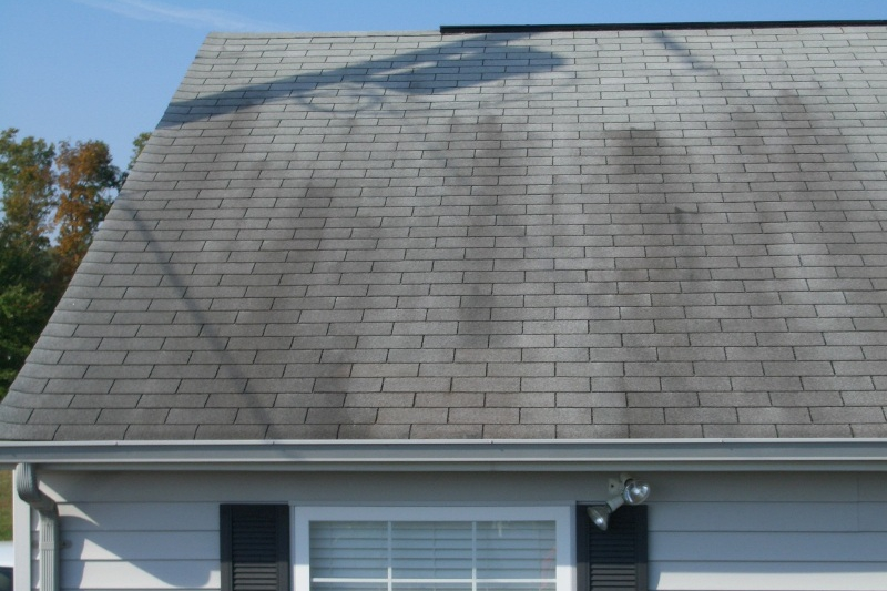 Stains On Asphalt Roofing Shingles