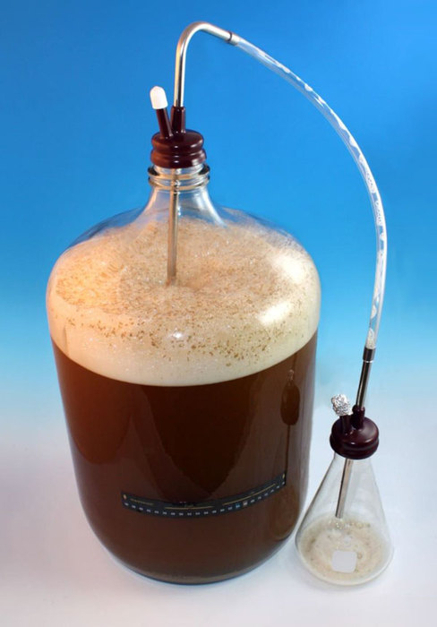 how to make a yeast starter